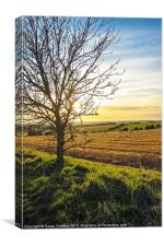 Sunset View From Kithurst Hill, Sussex, Canvas Print