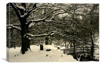 Frozen Trees, Canvas Print