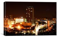 Sheffield City by Night, Canvas Print