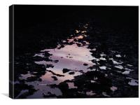 reflective mud puddle, Canvas Print