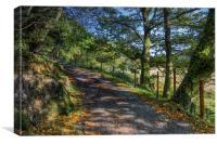 Autumn Countryside , Canvas Print