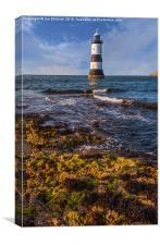 Summer Lighthouse , Canvas Print