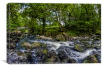 River Conwy , Canvas Print