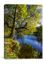 Autumn By The River, Canvas Print