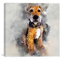 Patterdale Terrier, Canvas Print