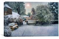 Snowy Park, Canvas Print
