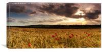 Poppy Field Sunset, Canvas Print