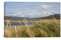 Mawddach Estuary View, Canvas Print