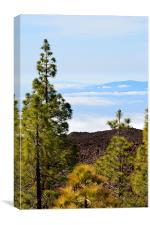 La Gomera Peak, Canvas Print