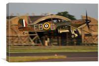 Spitfire Landing, Canvas Print