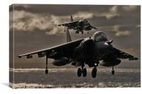 Harrier pair, Canvas Print