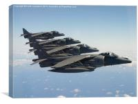 Harrier Formation, Canvas Print