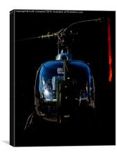 Royal Marine Gazelle in the shadows, Canvas Print