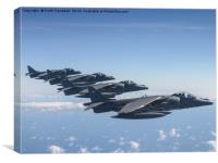 Harrier Formation., Canvas Print