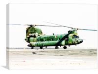 Dutch CH-47 Chinook, Canvas Print