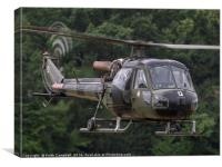 British Army Westland Scout Helicopter, Canvas Print