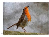 Robin oil painting, Canvas Print
