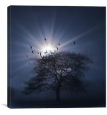 One Misty Morning, Canvas Print