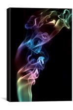 Smokey 7, Canvas Print