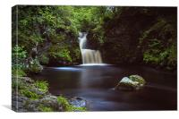 Linn of Luthrie, Canvas Print