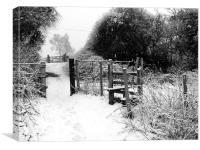 Winter Gate, Canvas Print