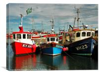 Pittenweem Fishing Boats, Canvas Print