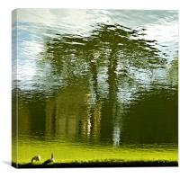 Geese at Stowe, Canvas Print