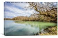 Newtown River Isle Of Wight, Canvas Print
