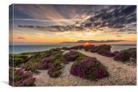 Headon Hill Sunset, Canvas Print