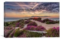 Headon Hill Sunset 2, Canvas Print