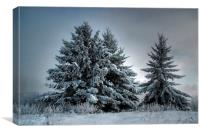 In The Spirit Of Winter, Canvas Print
