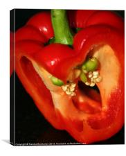Life Inside A Red Pepper, Canvas Print