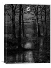 Troll Woods, Canvas Print