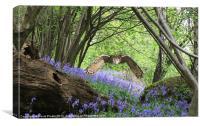 Woodland Flight, Canvas Print