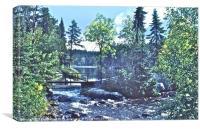 Rushing River Provincial Park, Canvas Print