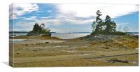 Allen Point, Maine, Canvas Print