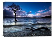 Loch Lomond, Scotland, Canvas Print
