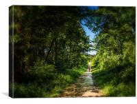 The Lonely forest runner, Canvas Print