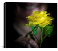 The Yellow Rose, Canvas Print