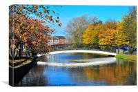 Newry Canal, Canvas Print