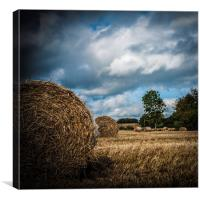 Autumn Harvest II, Canvas Print