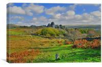 Dartmoor: Vixen Tor, Canvas Print