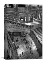 Natural History Museum, London, Canvas Print