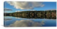 Loch Garten reflection, Canvas Print