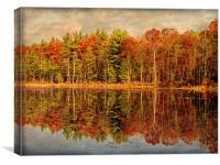 Autumn Woods, Canvas Print