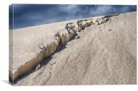 White Sands, Canvas Print