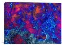 Glowing Web, Canvas Print