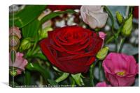 Red Rose with flowers