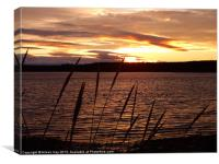 Sunset Glow Over Findhorn Bay, Canvas Print