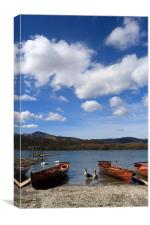 Derwent Water Geese on Lake, Canvas Print